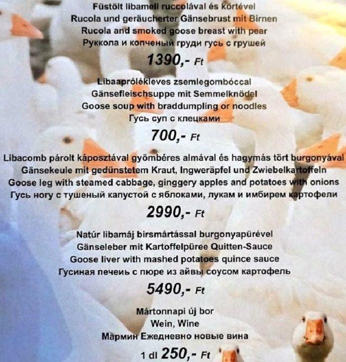 Меню ресторана Magyar Csarda