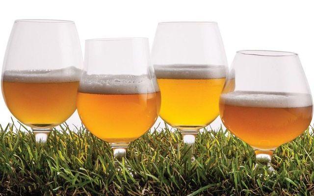 Качественные сорта немецкого пива