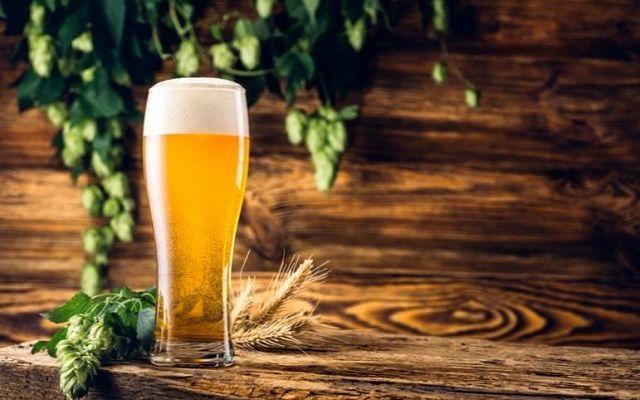 Экспресс-гид по немецкому пиву