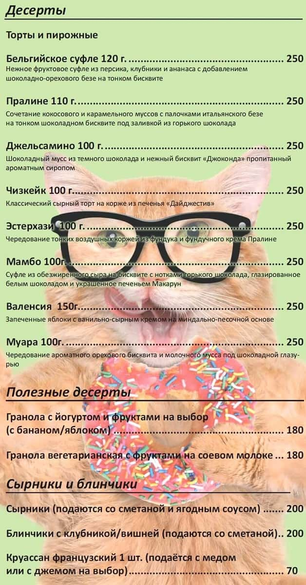 Меню Kotomania Cafe – Cats & Relax Club