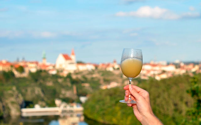 Алкогольный напиток из винограда