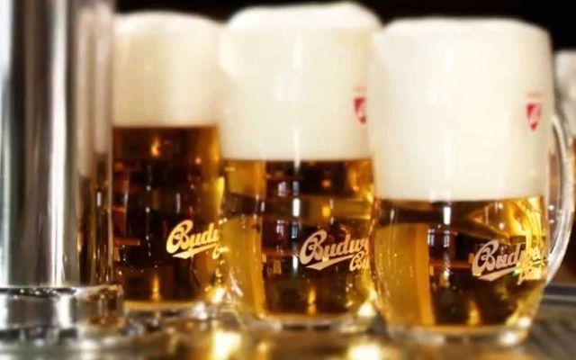 Budweiser Budvar, Чехия