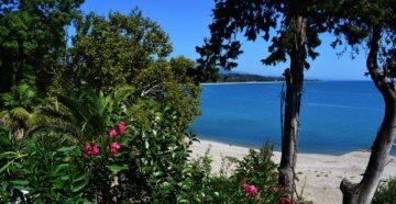 Красота Абхазии - Сухум и пляж